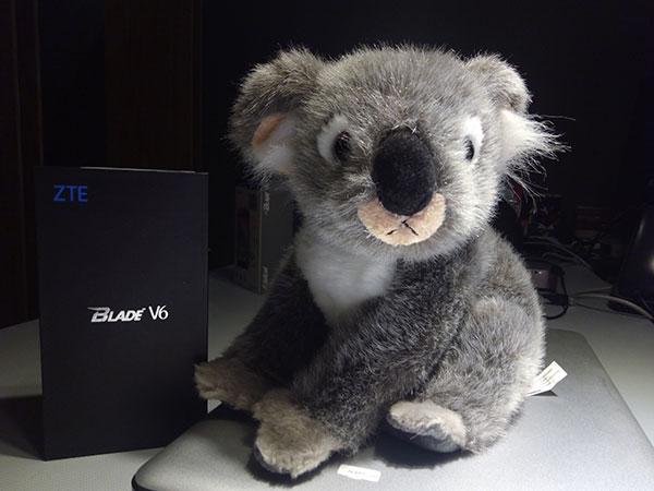 koala-zte