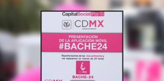 bache 24
