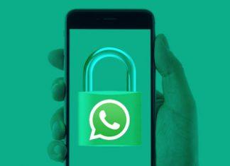 compartir información WhatsApp