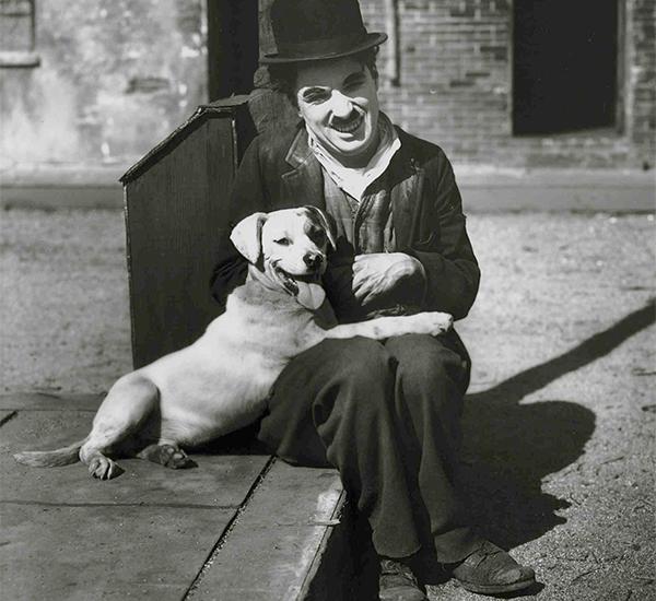 La cinta relata la amistad entre un hombre pobre y un perro de la calle. (Foto: sequenza21.com)