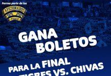 Tigres vs Chiva