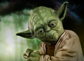 Yoda maestros