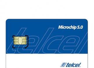 chip y microchip