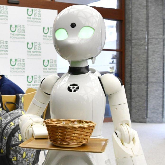 Los robots Orihime