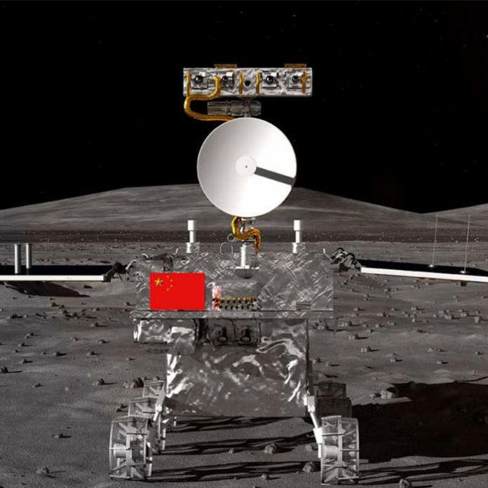 Así se ve la primera planta de algodón cultivada en la Luna
