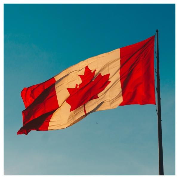 Profesiones para triunfar en Canadá.