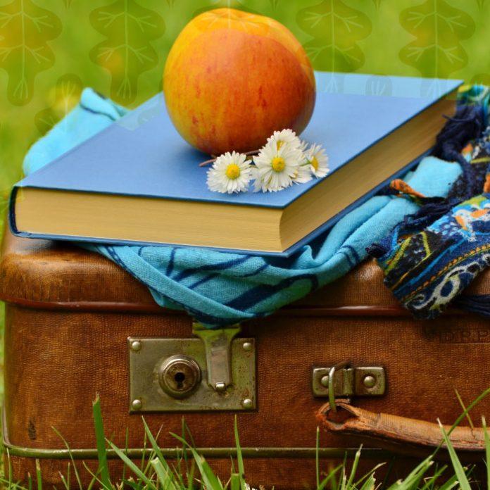 maleta para evitar basura en vacaciones