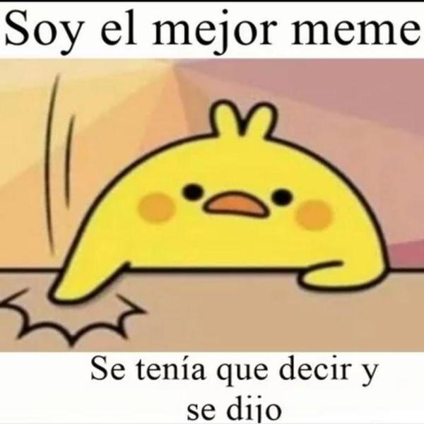 meme pollito