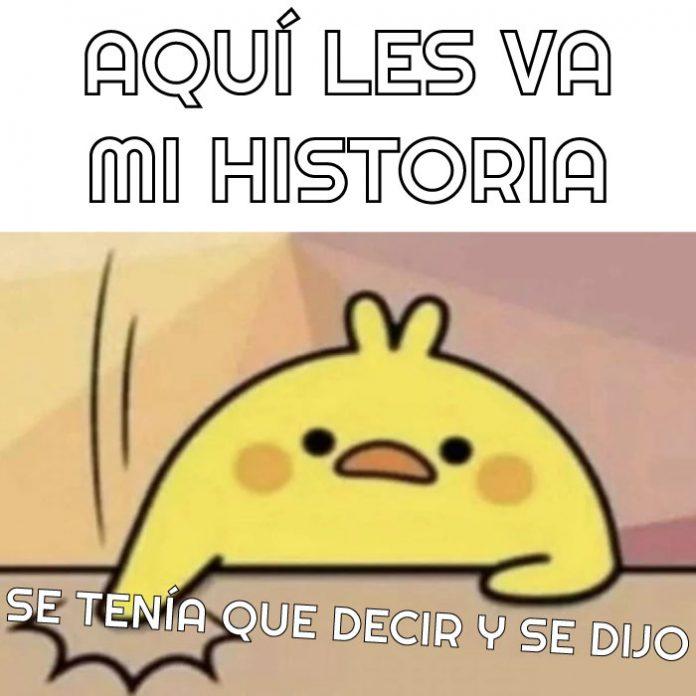 pollito meme