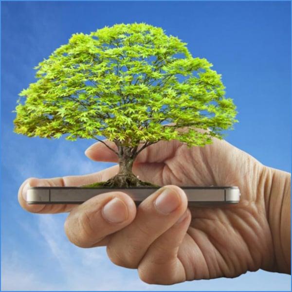 ecosia cuidar el medio ambiente desde tu celular