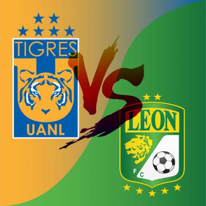 tigres-leon