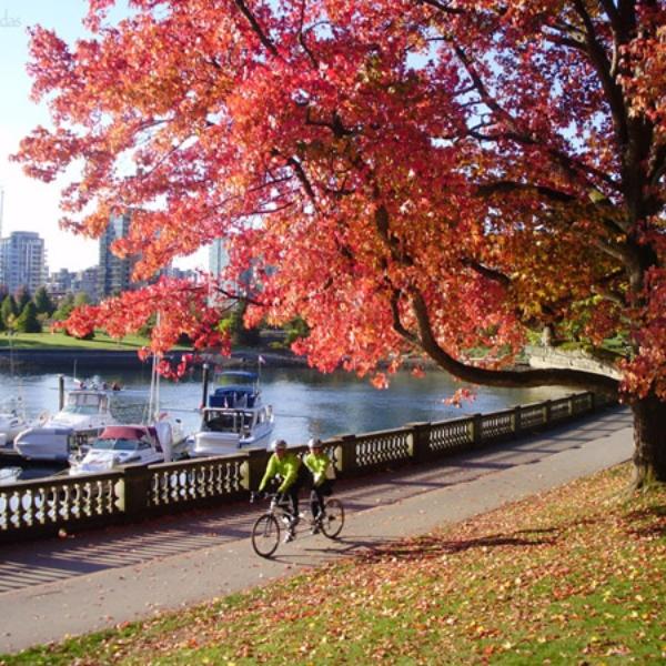 Lugares para vistar en otoño