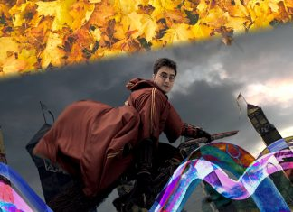 Escobas Harry Potter Tokio
