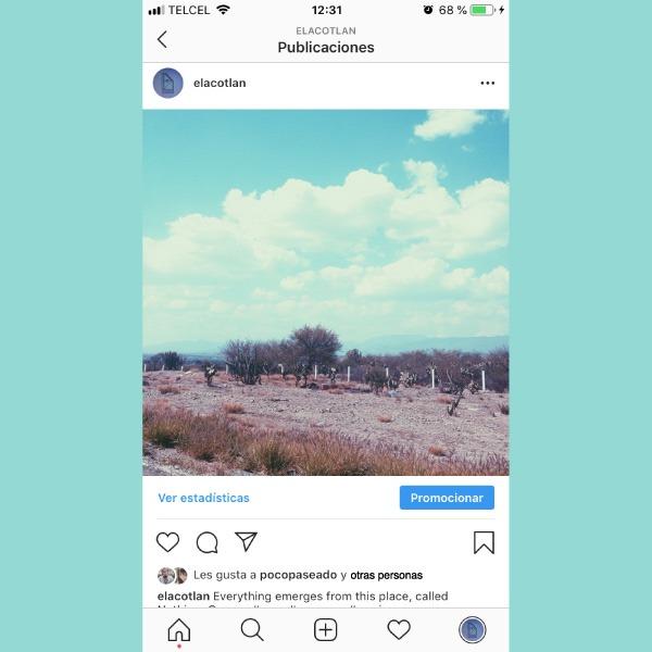 instagram oculta likes