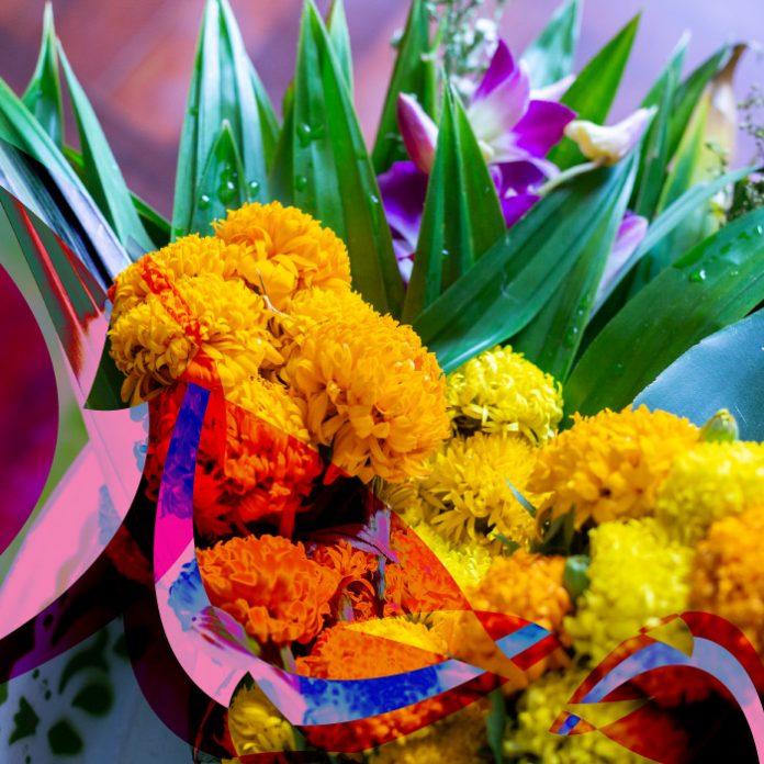 Qué hacer con las flores de cempasúchil