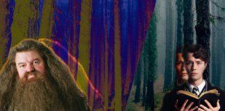 Animales Fantásticos 3 Harry Potter