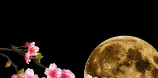 Superluna de flores mayo