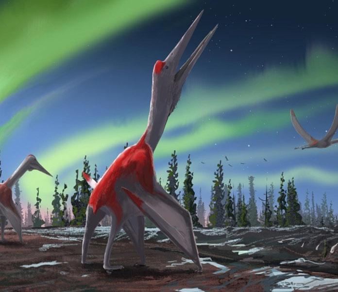 Paleontólogos encontraron el fósil de un dragón de hielo. *Foto vía Cadena Política