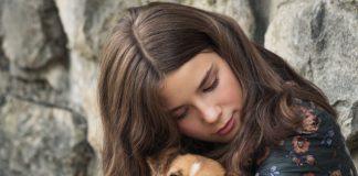 Adoptar perrito cuarentena