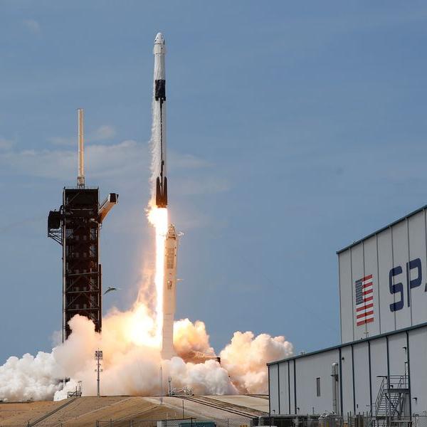 Caimán infiltrado SpaceX NASA