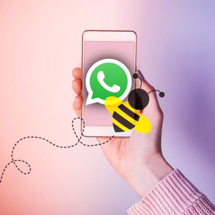 WhatsApp zumbidos MSN Messenger