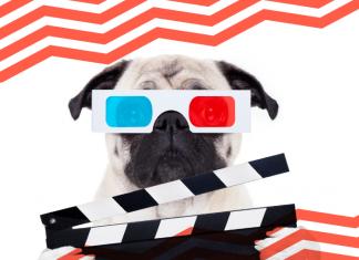 Día Mundial del Perro: nuestros lomitos peluditos en el cine. *Foto: Redacción