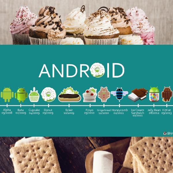 android 11 tambien tiene nombre de postre