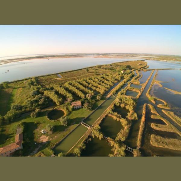 Falconera Airbnb ofrece rentar isla entera en Italia en la laguna de Venecia