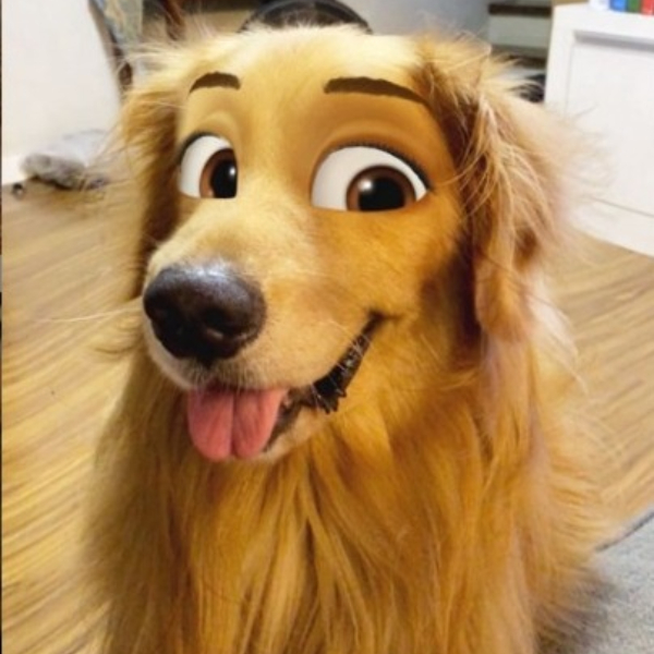 Cartoon face filtro Snapchat
