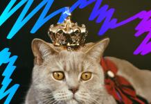 Por qué los gatos son mejores que los perros