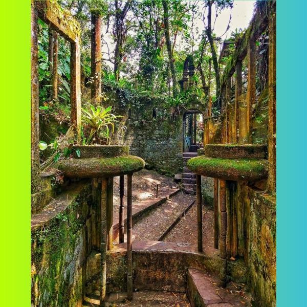 Jardín Edward James gana premio Traveller´s Choice 2020
