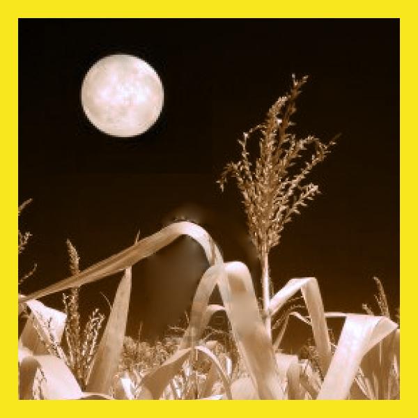 luna de maiz eventos astronomicos de septiembre