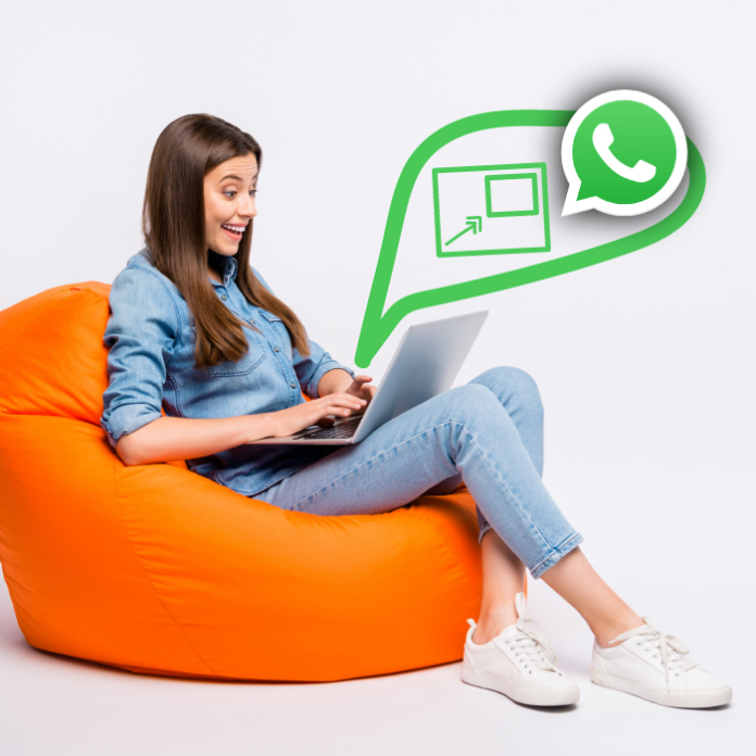 funcion PIP para ver videos sin salir de tus chats en whatsapp web