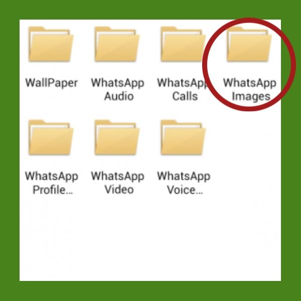 Como recuperar las fotos que borraste de tu WhatsApp