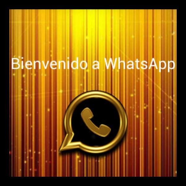 funciones del WhatsApp Gold