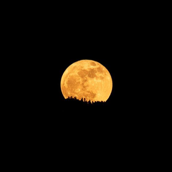 las mejores fotos de la Luna Azul desde México