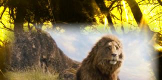 Aslan león en Las Crónicas de Narnia