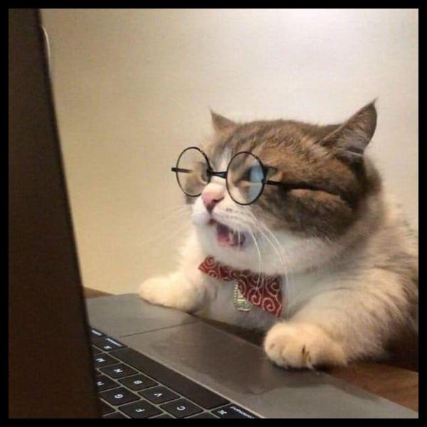 como saber quien ve tu perfil de instagram