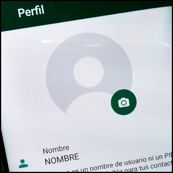 Foto de perfil cómo cambiar la de contactos