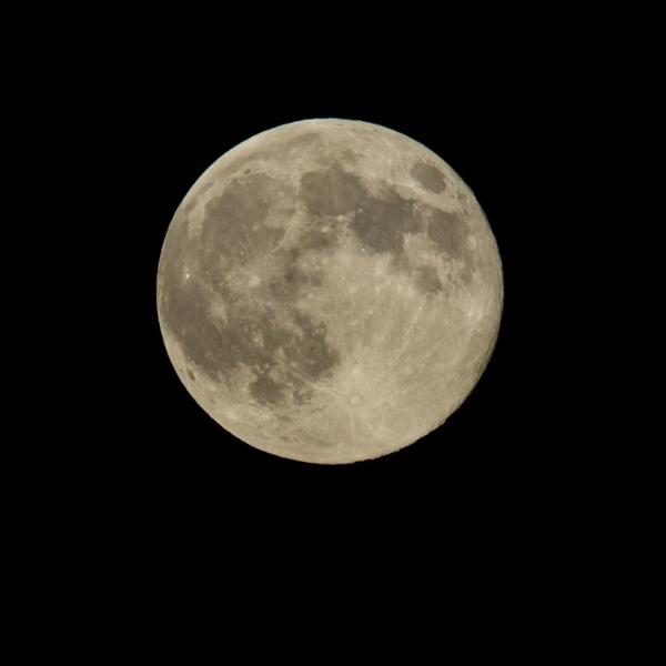Luna Nueva 28 de enero 2021