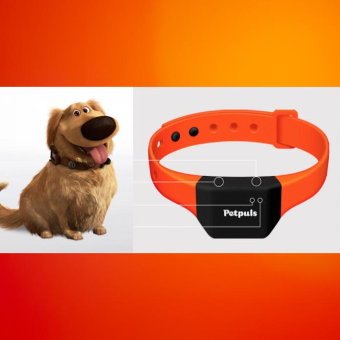 collar inteligente PetPuls que traduce las emociones de tu perro