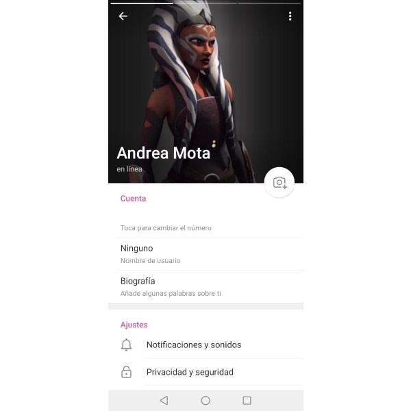 Álbum de fotos en Telegram foto de perfil