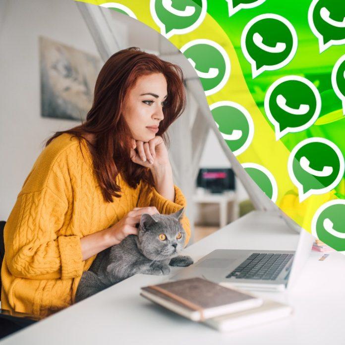 trucos para ver mensajes de manera oculta en WhatsApp Web