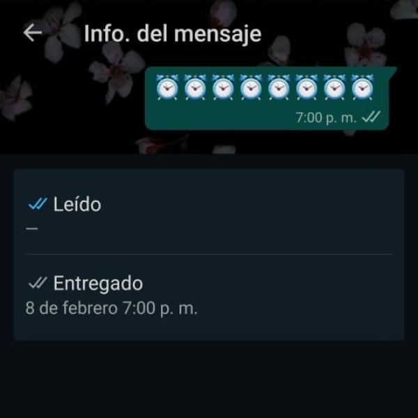 Cómo ver a qué hora se leyó un mensaje de WhatsApp