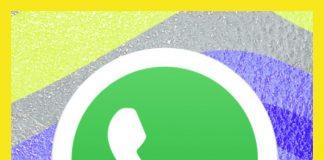 WhatsApp Transparente