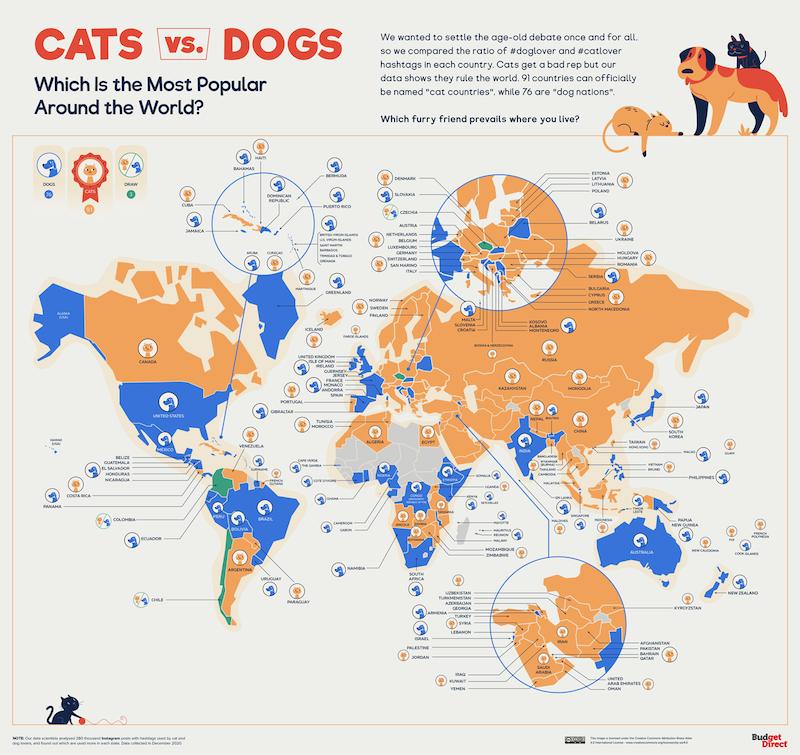 perros o gatos cuáles son más famosos en el mundo
