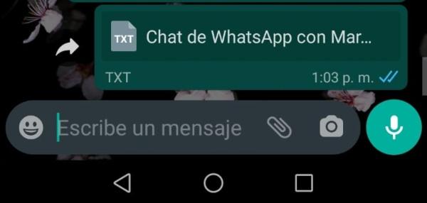Chat de WhatsApp con