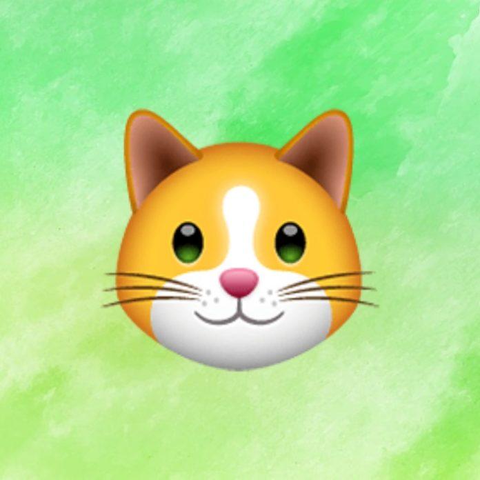 WhatsApp: ¿Por qué existen 9 emojis de gatos y cuál es su significado?- Blog Hola Telcel