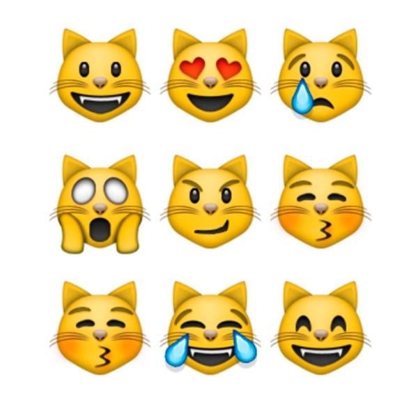 Nueve gatos de WhatsApp y su relación con las creencias egipcias.- Blog Hola Telcel