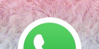 WhatsApp: ¿Cómo desactivar tu cuenta temporalmente?- Blog Hola Telcel
